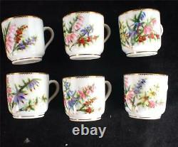 Antique English Porcelain Tea Coffee Set Service Painted Flowers Ejd Bodley