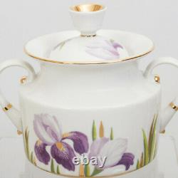 Irises 20 pc Tea Set Imperial Porcelain Lomonosov LFZ Fine Russian China