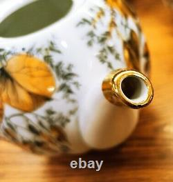 Porcelain tea set lfz (Lomonosov) Golden garden 22 items