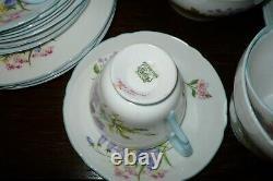 Shelley Wild Flowers Bone China Tea Set