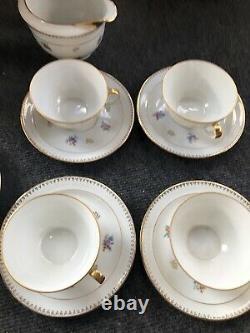 Vintage Chastagner & Cie Limoges France Coffee Tea Pot Set 20 Pieces Floral